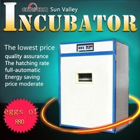 distributors wanted 880 cheap penguin egg incubator for sale