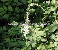 Cimicifugae racemosae rhizome/ Black Cohosh P.E