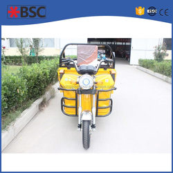 profitable rickshaw for cargo