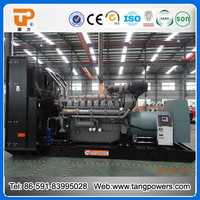 UK engine 1 mw diesel generator with air filter