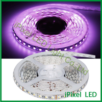 china supplier rgbw 60leds strip lightings flexible led strip