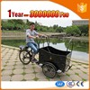 durable and pretty electric cargo trikee with passenger seat for adult