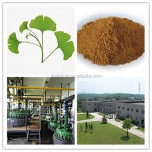 Pure natural EP/USP standard ginkgo biloba leaf extract