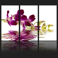Orchid flower canvas prints / Wall Art Large canvas/Photo wrap/ Stretched Canvas/ Ready to hang/ Wall decor