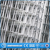 china supplier welded wire mesh dog cage
