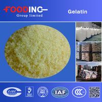 price gel strength pharmaceutical grade sale gelatin powder manufacturers