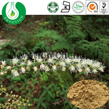 High Quality Black Cohosh Extract Triterpenoside