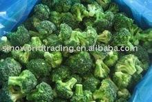 Frozen Broccoli Floret