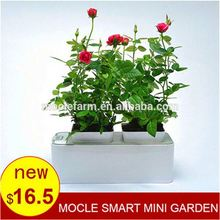New garden products 2015