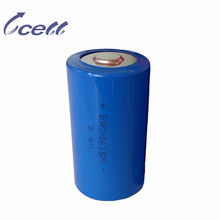 3.6V 20000mAh d size dry cell 20000mAh rechargeable Battery 34615