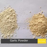 100mesh latest crop china air dried garlic powder