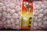 Chinese 2010 new white garlic