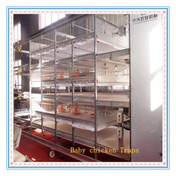 China hot sale low price cages chicken traps for egg chicken/layers