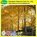 De alta calidad de humo del árbol p. E. El humo/extracto de árbol/humo en polvo del árbol