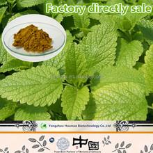 Factory directly sale Rosmarinic Acid natural organic Melissa Officinalis Leaf Extract