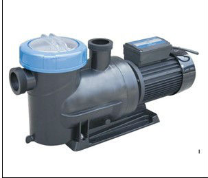 304 Ss Motor Shaft Hot Sale Solar Swimming Pool Pump With