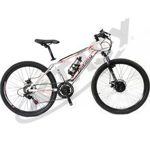 XTASY fast cheap green power electric bike,electric bike racing
