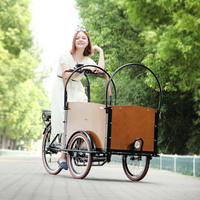 CE Danish bakfiets family 3 wheel electric cargo trike front box with pedal sensor for sale