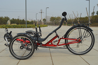 Folding Delta Recumbent trike with Suspension