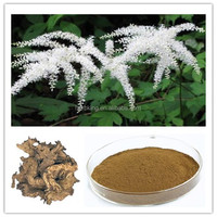 100% High quality Black Cohosh Extract