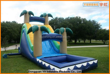 customed inflatable tropical water slide with pool manufacturer in China