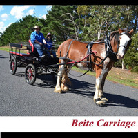 Antique carriage old horse drawn vehicle for sale
