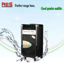 Handmade High Quality Hi-fi Vacuum Tube Speaker System, Vacuum Tube Amp