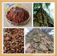 Natural Pine Bark Extract Powder 95% OPC HPLC