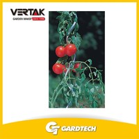 Professional QC team KD tomato spiral plant support
