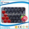 chinese packaging manufacturers fruit PP tray disposable plastic fruit tray