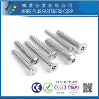 Taiwan High Quality Carbon Steel Stainless Steel Nickel Plating Galvanized M3 Torx Drive Security Screw