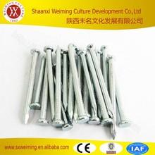 Black Hardened Steel Galvanized Concrete Nails China