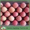 Top quality blush fuji apple price
