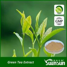 100% natual organice tea extract