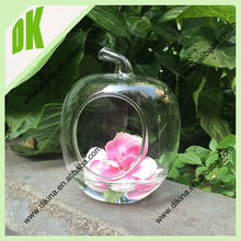 Unique glass vessel shaped like an apple! Perfect for a terrarium! Wholesale Clear glass apple vessel terrarium