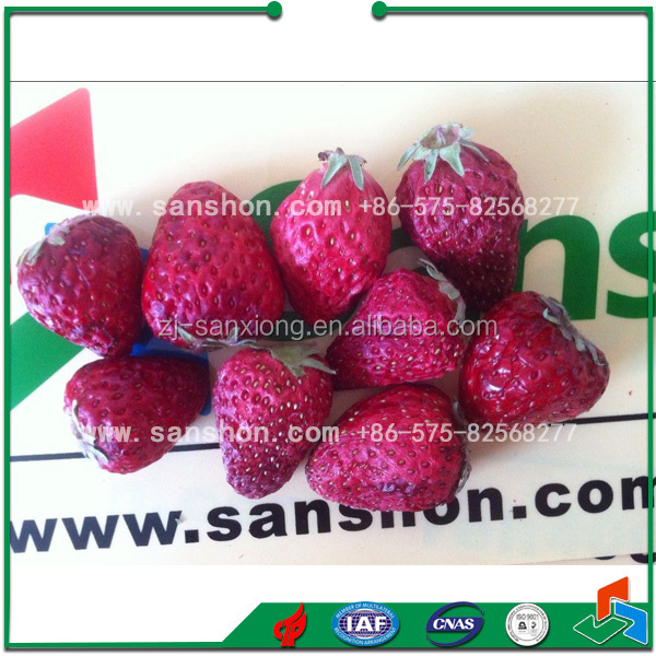 Fruit and Vegetable Vacuum Lyophilizer Price