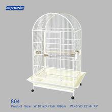 804 bird cage