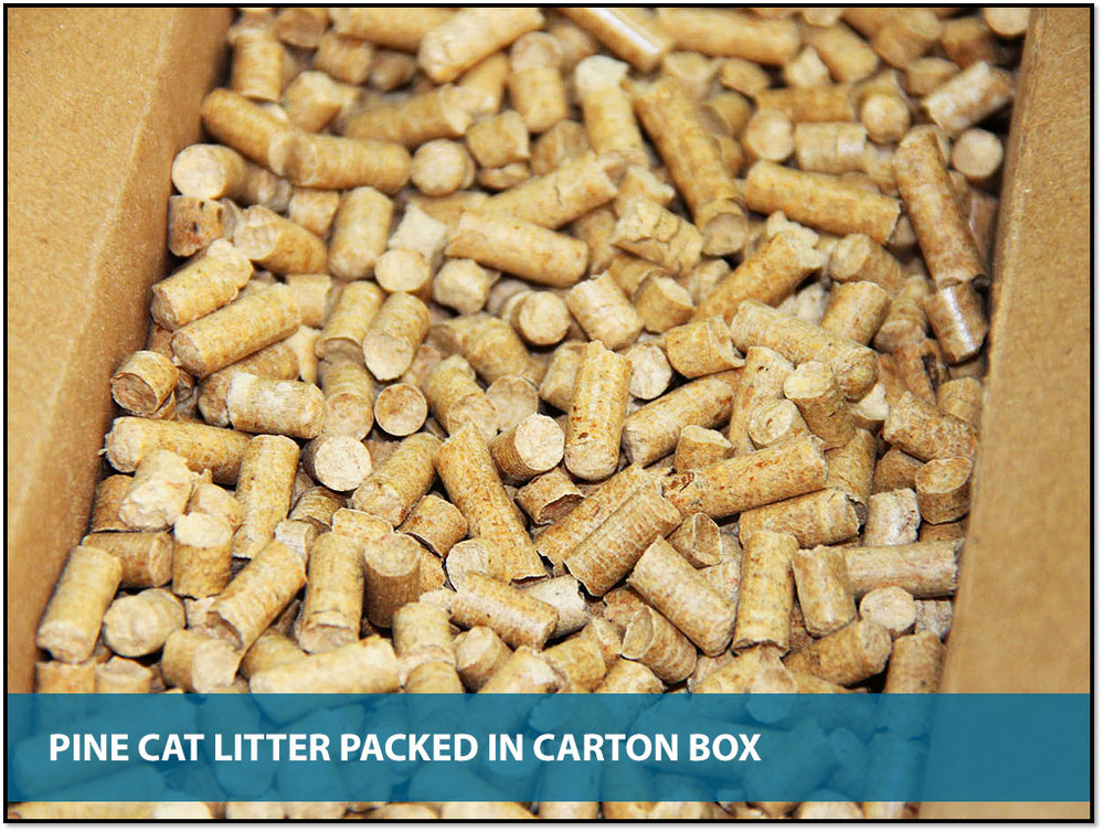 pine cat litter how to clean