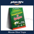 productos de ciclo de rusia ratones trampa de pegamento matar cucarachas araña de la hormiga