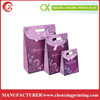 Purple Color Art Paper Gift Bag with Die Cut Handle for Candy Packaging