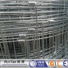 Factory direct sale cattle fence/hinge joint knot field fence for animals