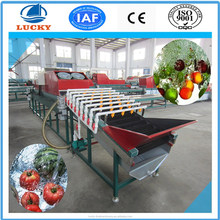 Fully automatic fruit and vegetable processing machinery apple orange tomato potato washing machine dry cleaning machine