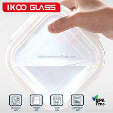 IKOO No Leak Lids 4.2-cup Rectangle glass Storage container w/ Red Plastic Cover