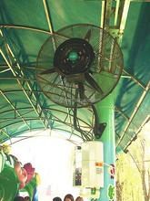 """For Park / Zoo / Coffee Bar 26"""" Business Type Wall Installed Water Misting Fan"""