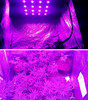 LED grow lights,led grow light spider 16 cob 1440w ,spider led plant lights,hydroponics
