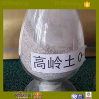 white clay kaolin 325 meshes in refractory