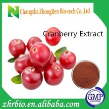 Cranberry Extract 50%Proanthocyanidin