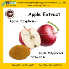 15 Year's Manufacturer supply Natural Apple Extract