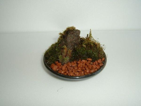 artesanato mini jardim:Home > Brindes e artesanato > Outros brindes e artesanatos (218206)