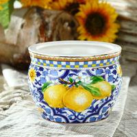 Elegant Blue and Lemon New Design Ceramic Pot